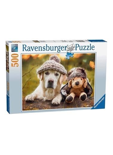 Ravensburger 500 Parça Puzzle Labrador 147830 Renkli